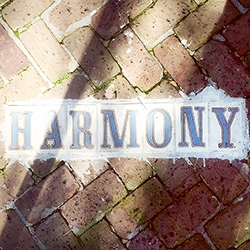 Harmony in New Orleans
